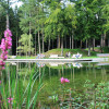 Veranstaltung: Garten & Ambiente LebensART