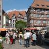 Blumenmarkt Mosbach