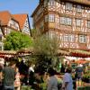 Veranstaltung: Kräutermarkt Mosbach