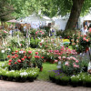 Gartenfestival LebensLust Hardegsen