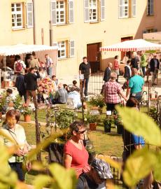 Veranstaltung: Schlossgartenträume Schloss Kapfenburg