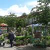 15. Steißlinger Gartentage