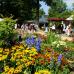 Abgesagt - GartenRomantik Wertheim 4