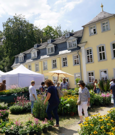Abgesagt - GartenRomantik Wertheim