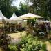 Abgesagt - GartenRomantik Wertheim 1