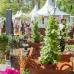 Abgesagt - Garten- und Landhaustage - La Villa Cotta 2
