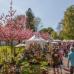 Abgesagt - Garten- und Landhaustage - La Villa Cotta 3