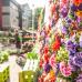 Gartenmesse, Keramika & Bauernmarkt in Nagold 1