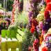 Gartenmesse, Keramika & Bauernmarkt in Nagold 9