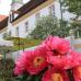 23. Freisinger Gartentage 13