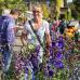 Grüner Markt zum Jubiläum \'300 Jahre Baumschulen Späth\' 4