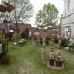 4. Altdorfer Gartenzauber 6