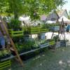 4. Altdorfer Gartenzauber 3