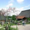 Pflanzenmarkt am Kiekeberg 2