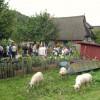 Pflanzenmarkt am Kiekeberg 5