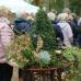 Holsteiner Herbstmarkt Gut Emkendorf 6