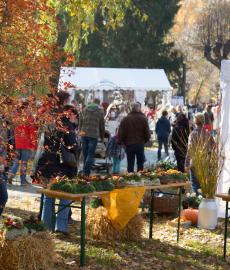 LebensArt Herbstzauber Gut Altenhof