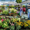 Gartenmarkt \
