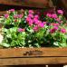 Verschoben, neuer Termin wird noch bekannt gegeben - Du und dein Garten 4