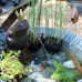 Verschoben, neuer Termin wird noch bekannt gegeben - Du und dein Garten 5