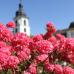 Das Fürstliche Gartenfest Schloss Fasanerie 3