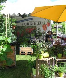 Veranstaltung: Die Biogartenmesse auf der Domäne Mechtildshausen