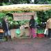 Biogartenmesse Orangerie Schloßpark Biebrich 5