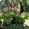 Biogartenmesse am DreiLänderGarten 3