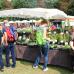 Biogartenmesse Orangerie Schloßpark Biebrich 3