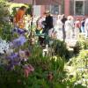 Faszination Garten Schloss Weingartsgreuth 4