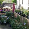 Faszination Garten Schloss Weingartsgreuth 1
