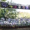 Faszination Garten Schloss Weingartsgreuth 8