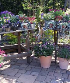 Frühlings-Gartenmarkt