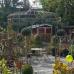 Verschoben auf 11./12.7.20 - Gartenmarkt in Essen 6