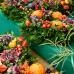 Holsteiner Herbstmarkt Gut Emkendorf 4