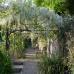 Schloß Ippenburg öffnet seine Gärten 2
