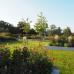 Schloß Ippenburg öffnet seine Gärten 4