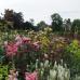 Schloß Ippenburg öffnet seine Gärten 6