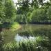 Schloß Ippenburg öffnet seine Gärten 7