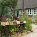 Pflanzenmarkt am Kiekeberg 4