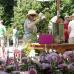Rosenmarkt am Kiekeberg 7