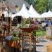 Holsteiner Frühlingsmarkt 8