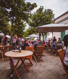 Veranstaltung: Wein- & Schlossfest Kassel