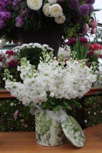 Im März wartet die ein oder ander Gartenveranstaltung auf Sie!