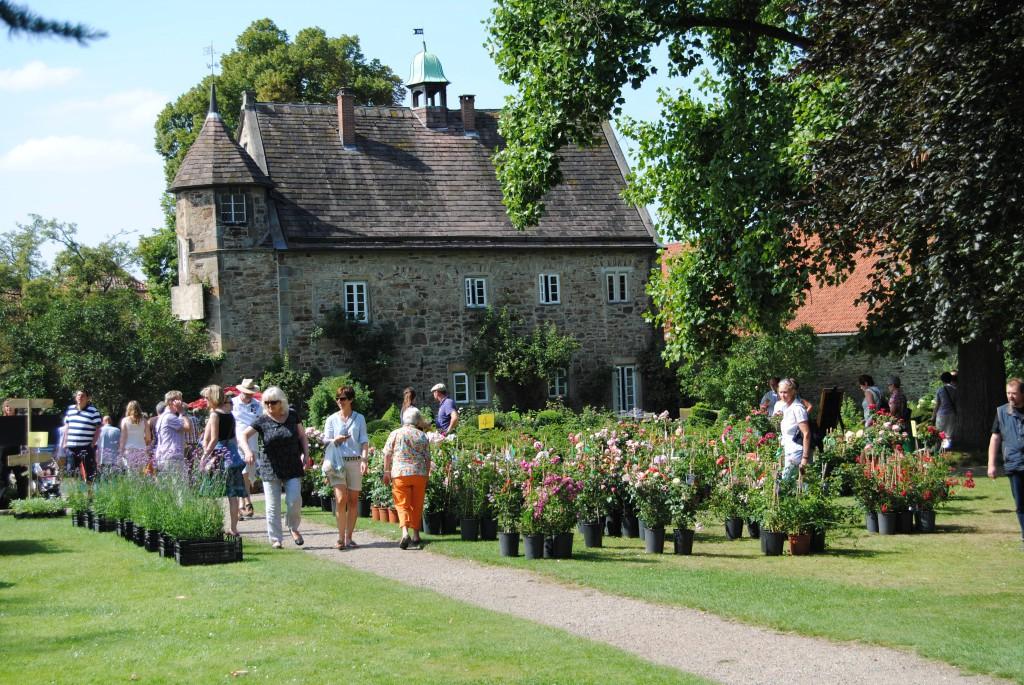 Romantic Garden Hier Stellen Wir Die Gewinner Vor