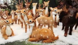 Nicht nur der Bückeburger Weihnachtsmarkt hat süße Geschenkideen zu bieten...