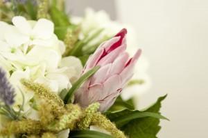 Was wäre ein Herbstmarkt ohne schöne Pflanzen?