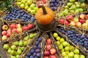 Ernten und Pflanzen: Die Gartenarbeit im Oktober ist vielfältig
