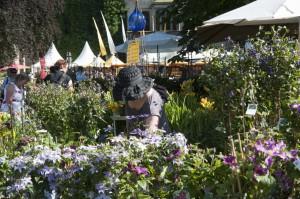 Sommerfestival Ippenburg