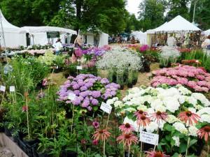 Frühlingsveranstaltung am Wochenende: Gartenwelten Gelnhausen